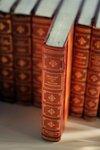 Литература как средство познания мира